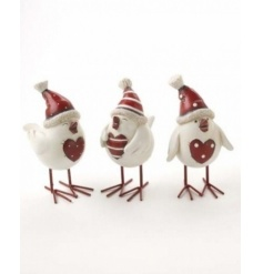 These chaming, perky little birds are full of personality