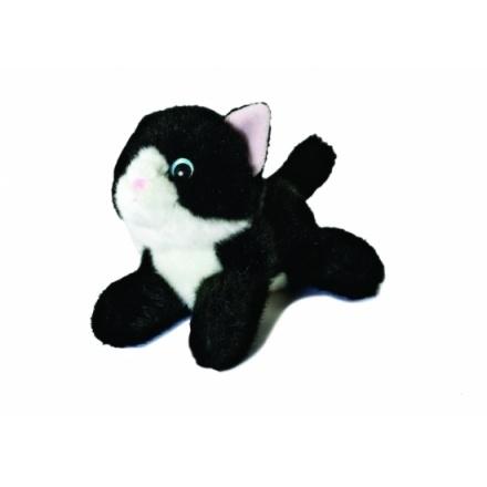 Aurora Favourites - Black And White Cat