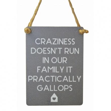 Craziness Family Mini Grey Metal Sign
