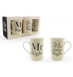 Set of two boxed mugs with humorous text