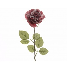 A classic deep red rose on stem with a festive dusting of glitter snow.