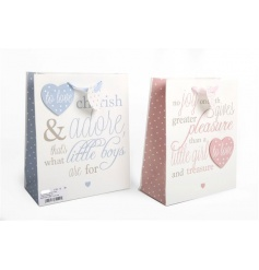 Two assorted pink and blue gift bags with poem