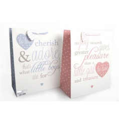 Pink and blue gift bags with poem, perfect for a new baby