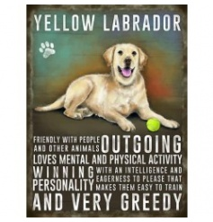 Hanging metal sign with colourful Golden Labrador image and script