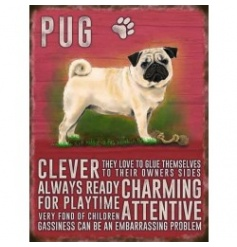 Hanging metal sign with colourful Pug image and script