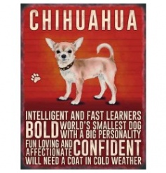 Hanging metal sign with colourful Chihuahua image and script