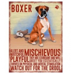Hanging metal sign with colourful Boxer image and script