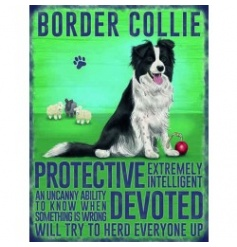 Hanging metal sign with colourful Collie image and script
