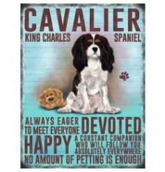 Hanging metal sign with colourful Cavalier King image and script