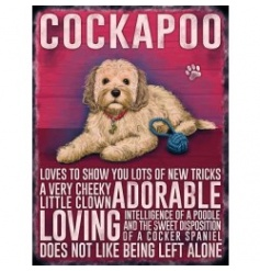 Hanging metal sign with colourful Cockapoo image and script