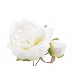 White coloured Peony Rose flower made from a silk material