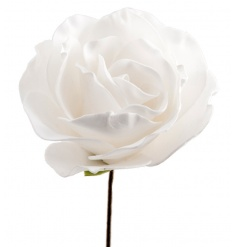 A superior quality foam rose with stem. Looks beautiful displayed in baskets, vases and jugs.