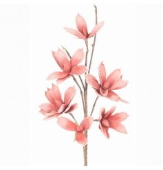Decorative Magnolia branch in a pretty pastel colour