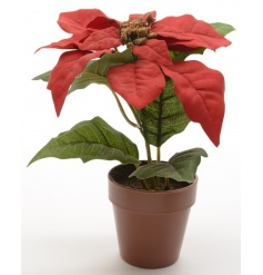 A beautiful red silk poinsettia in a pot. A decoration you can display each year.