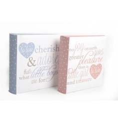 Pink and blue baby photo albums with poem script