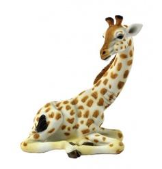 Decorative Giraffe figure complete with gift box by Leonardo
