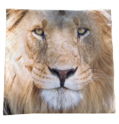 Decorative Lion cushion complete with insert