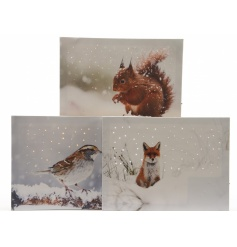 Light up LED winter pictures, 3 assorted