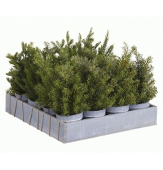 4 assorted artificial christmas trees in pots