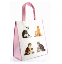 Practical shopping bag with Cat and Kitten print