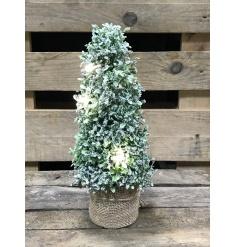 A gorgeous frosted topiary tree with a hessian base and lights. A fabulous home accessory and festive decoration.
