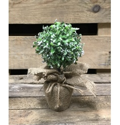 A charming topiary ball with a hessian base and a frosted finish. A beautiful home accessory and display item.