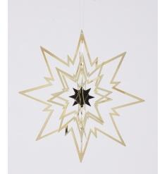 3D Spinning Silver Star