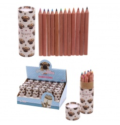 Colouring pencils in a cute Pug decorated tub