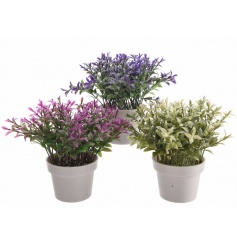 Brightly coloured artificial plants set within pots. A stylish home accessory. Ideal for adding a natural pop of colour.
