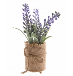 Place this charming rustic lavender around the home for a country touch. It comes with a hessian wrapped base.