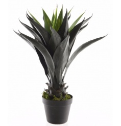 Create an impact with this richly coloured and fine quality artificial agave plant set within a black pot.