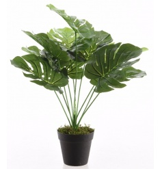 A fine quality artificial Monsetra plant. A rich, green plant making a stylish addition to any home.
