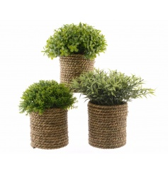 An assortment of 3 rustic style artificial plants, each is set within a chunky rope planter.