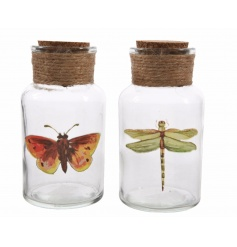 A mix of 2 glass bottle decorations in butterfly and dragonfly designs. Complete with cork top and rustic jute string.