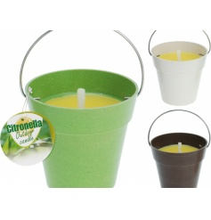 Citronella Outdoor Candles