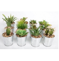 Assortment of varied artificial rubber shrubs and plants