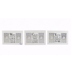 3 assorted slogan frames, each with twin 4 x 6 frames. A stylish gift item.
