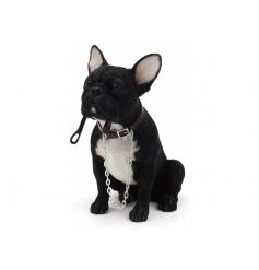 A fine quality French Bulldog figure from the popular Walkies range by Leonardo.