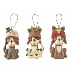 A set of 3 adorable Christmas dog hangers, each with a charming knitted hat.