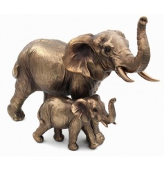 A fine quality Elephant with Calf ornament from the Bronzed Reflections range. Comes gift boxed.