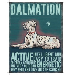 A mini metal sign with a Dalmation illustration with characteristics listed.