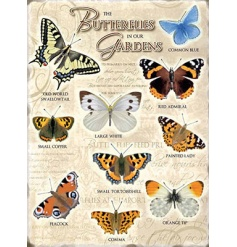 The Butterflies in our Garden Metal Sign