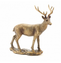 A stunning, fine quality bronze deer ornament from the popular Bronzed Reflections range.