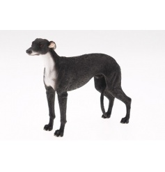 New Greyhound model from The Leonardo Collection. Length 18cm