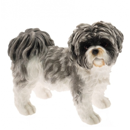 Shih Tzu Dog (Small)