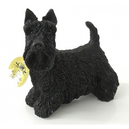 Scottish Terrier Dog Small