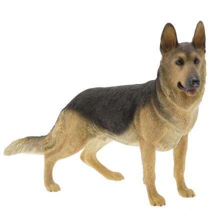 German Shepherd Dog (Small)